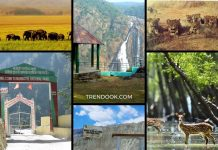 Largest National Parks In India